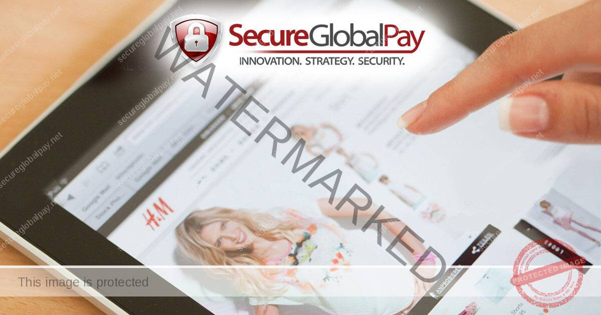Paypal Credit Card Processing for E-Commerce